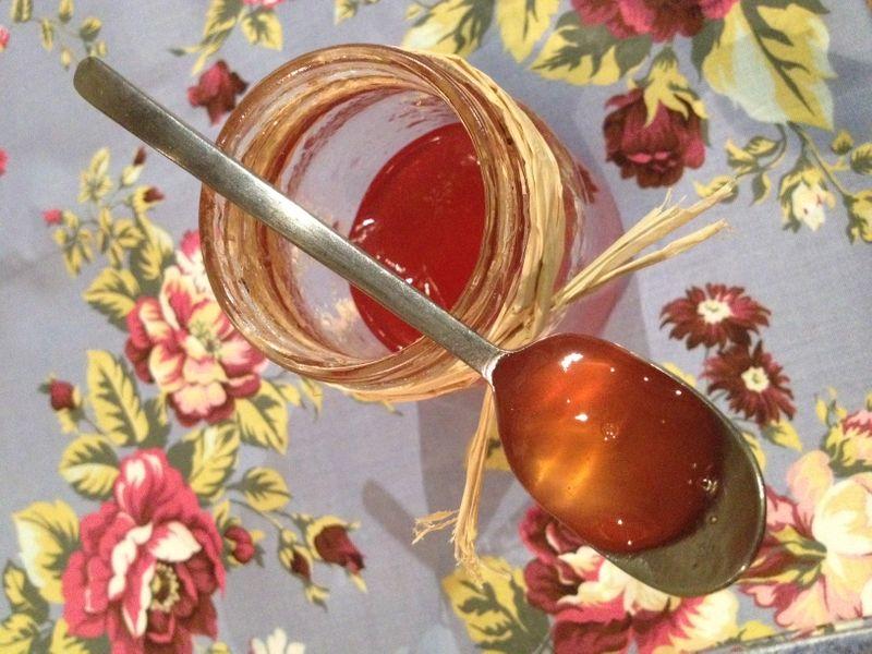 Gel e de pommes avec pluchures ferme de sainte marthe - Gelee de pommes avec extracteur ...