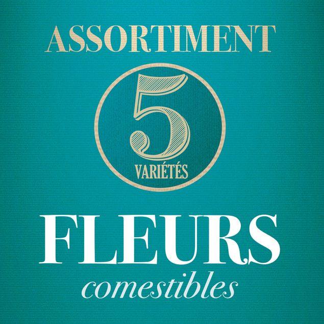 ASSORTIMENT DE FLEURS COMESTIBLES