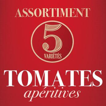 ASSORTIMENT DE TOMATES APERITIVES