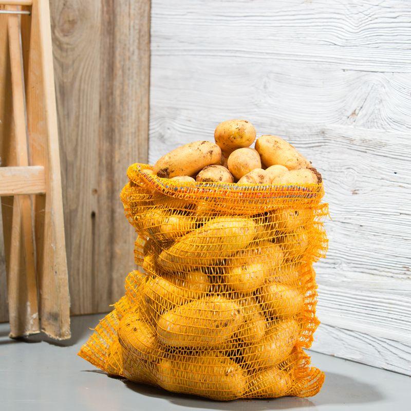10 filets stockage pomme de terre 25 kg ferme de sainte marthe - Pomme de terre germee comestible ...