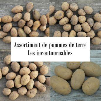 ASSORTIMENT DE POMMES DE TERRE INCONTOURNABLES