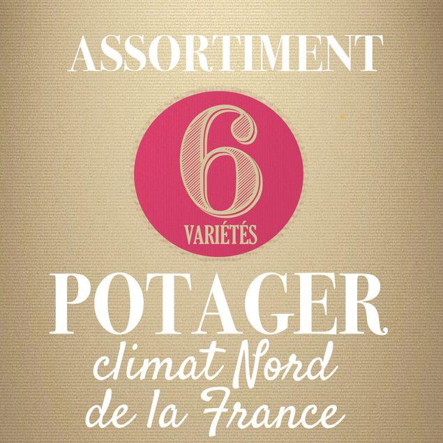 ASSORTIMENT POTAGER CLIMAT NORD DE LA FRANCE