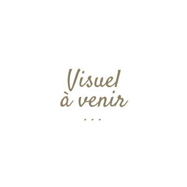 ROSIER ROSE DE RESCHT - ANCIEN